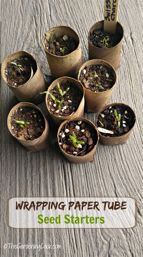 seed starting pots  eco friendly cardboard tubes