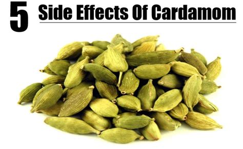 How Can We Decorate Our Home by 5 Side Effects Of Cardamom Diy Life Martini