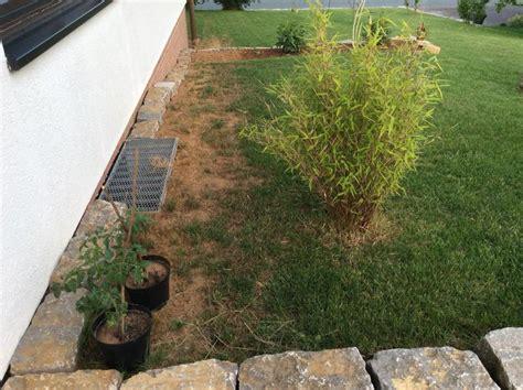 Garten Gestalten Trockener Boden by Gestaltung Trockener Ecke Im Garten Mein Sch 246 Ner Garten