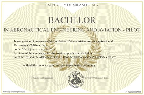 Mba Degree For Aviation by Bachelor In Aeronautical Engineering And Aviation Pilot