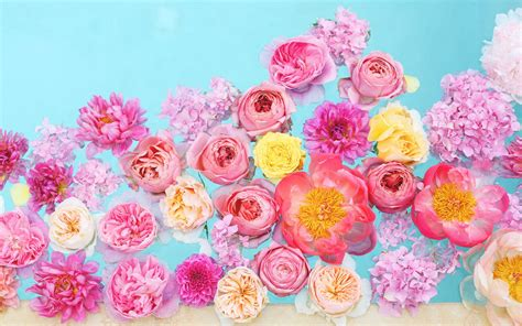 wallpaper for laptop flowers florals 1 jpg desktop wallpapers pinterest flower