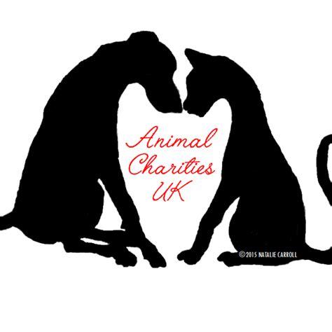 7 Great Animal Charities by Animal Charities Uk Ukanimalcharity