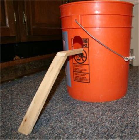 membuat jebakan tikus dengan ember membuat perangkap tikus sendiri dengan timba bekas merah