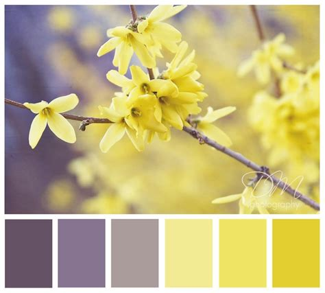 yellow color schemes 25 best ideas about gray yellow bedrooms on pinterest