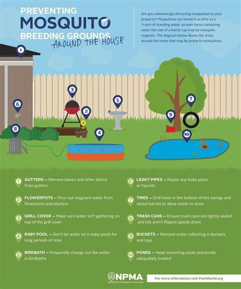 how to control mosquitoes in your backyard blog how to control mosquitoes in your backyard