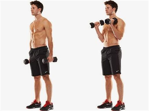 1 Potong 5 Kg Dumble Dumbbell Dumbel Dumbell Bukan Barbell Barbel 10 of the most effective tricep and bicep workouts with