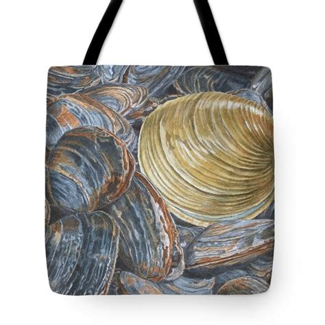 paint color quahog ideas painting on quahog etsy painting on quahog etsy quahog on clams