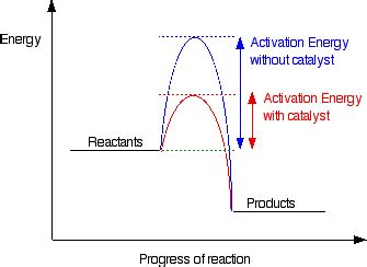 activation energy diagram the effect of catalysts on rates of reaction