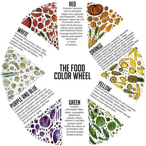 food color chart go nine food color wheel
