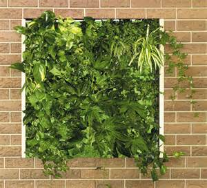Vertical Garden Plans by 25 More Cool Vertical Garden Inspirations Digsdigs