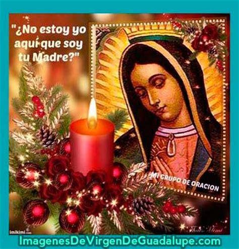 imagenes de la virgen de guadalupe con un bebe fotos con mensajes de la virgen de guadalupe imagenes de