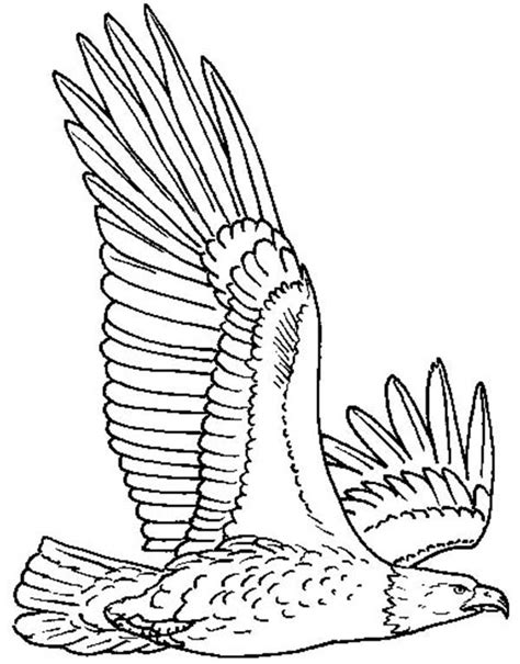 coloring page of eagle flying flying eagle coloring pages