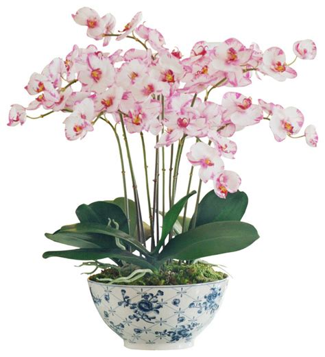 orchid plant in trellis bowl asian artificial