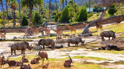 San Diego Gardens by San Diego Zoo Safari Park Escondido Ca California Beaches