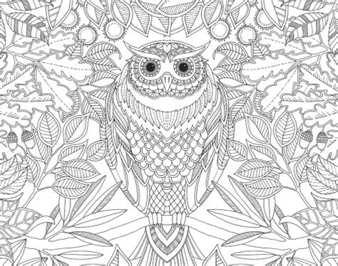 the coloring book for adults you ve probably never colored it coloring book friday november 13th