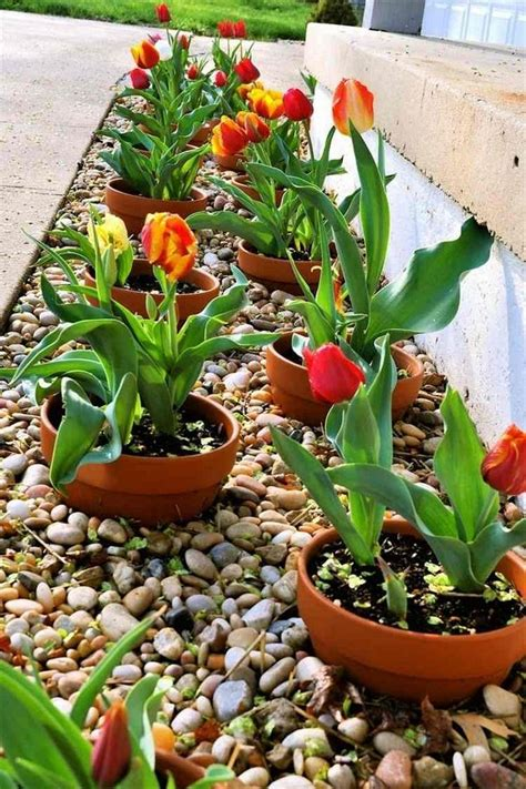 Rock Garden With Potted Plants 20 Best Ideas About Rock Flower Beds On Pinterest Landscape Near Me Pool Landscaping