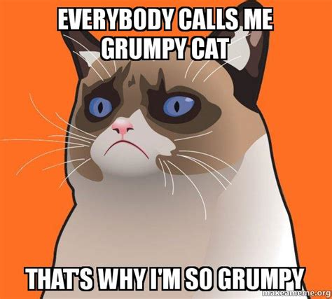 Make Your Own Grumpy Cat Meme - everybody calls me grumpy cat that s why i m so grumpy