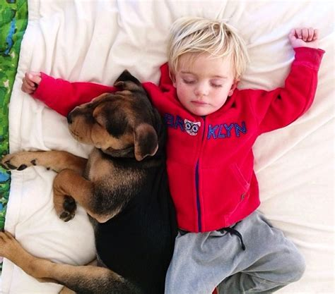 with puppies story a naptime story with and baby 11 fubiz media