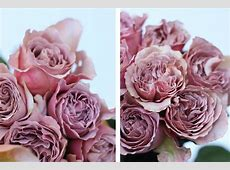 Rose Cafe Latte - an epitome of beauty - The Smell of ... Light Pink Hearts