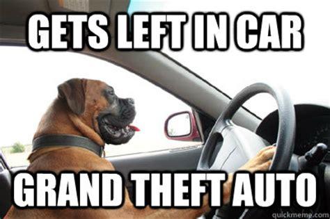 Dog In Car Meme - gets left in car grand theft auto gta dog quickmeme