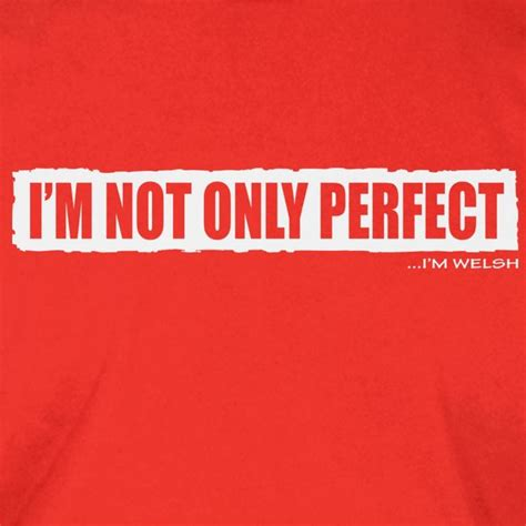 T Shirt Im Not Only 41 i m not only i m t shirt brinley