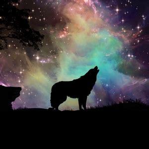 wolf ipad ipad  ipad mini  parallax wallpapers hd