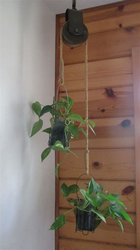 How To Hang Plants From Ceiling by 25 Best Ideas About Plant Hangers On Macrame