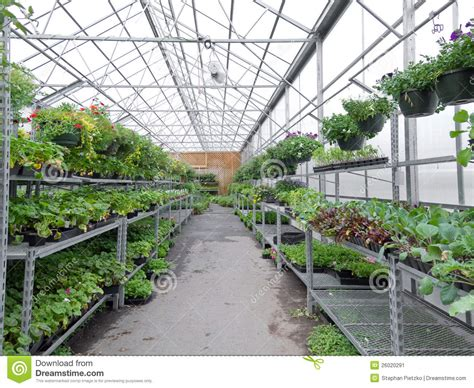 greenhouses advanced technology for protected horticulture books flowers growing in foil hothouse of garden center stock