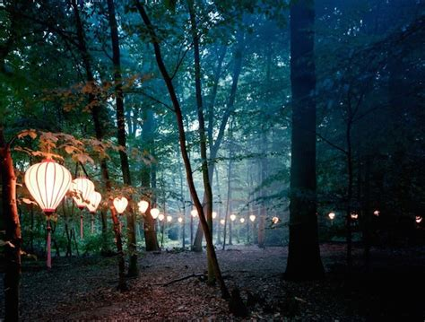 lights in the wood fubiz media