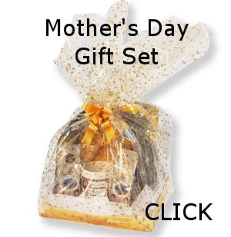 what is the best gift for s day pin by dale petrie on gift ideas mothers day
