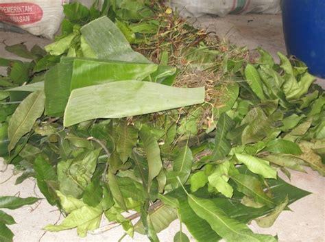 Pupuk Kompos Dan Pupuk Organik peluang usaha pupuk kompos organik dan analisa usahanya