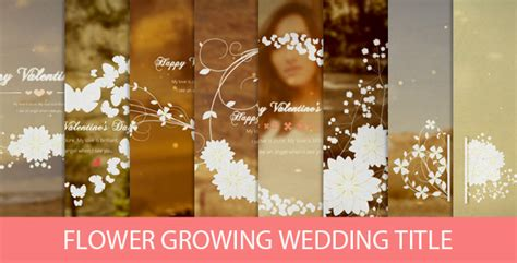 after effect wedding template flower growing wedding title by kassadin videohive