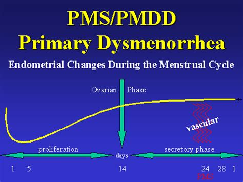 treatment for mood swings during period premenstrual syndrome premenstrual dysphoric disorder