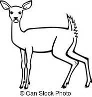 white tail deer illustrations and clipart 533 white tail