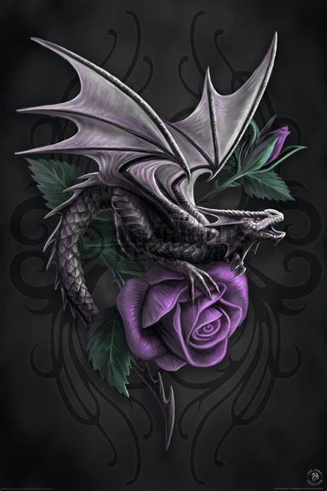 dark dragon tattoo designs 21 best images about on