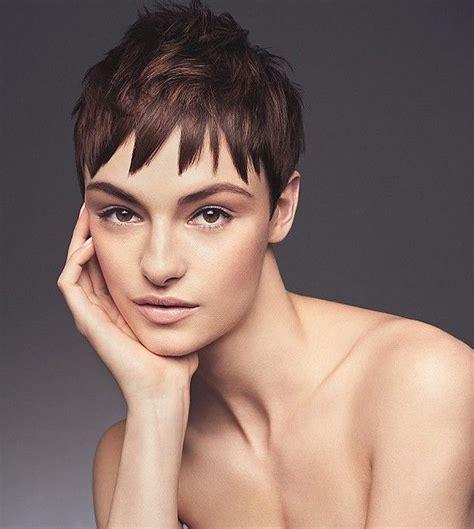regis bob hairstyles mejores 2578 im 225 genes de peinado color cortos en
