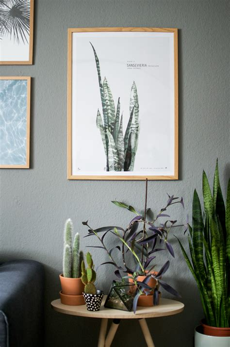 plant for home decoration urban jungle bloggers plants art 183 happy interior blog