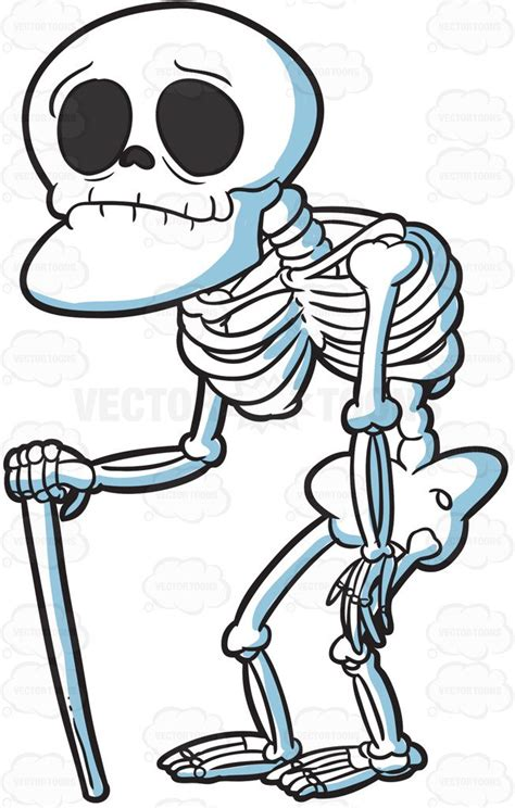 skeleton clipart an skeleton clipart by vector