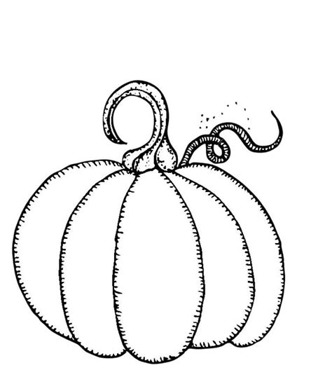 free templates for pumpkins free pumpkin templates coloring pages