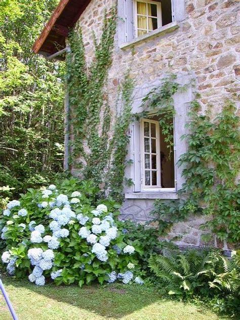 editrici inglesi le 25 migliori idee su giardini di cottage su