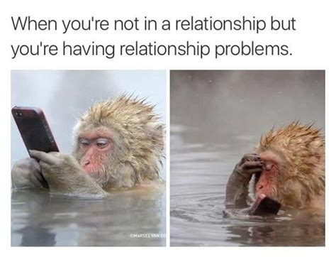 Memes About Relationships - 30 memes about relationship quotes words sayings