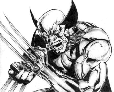 wolverine by pageless on deviantart