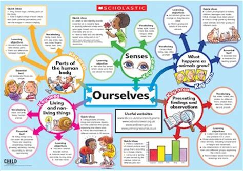 our selves ourselves poster primary ks1 teaching resource scholastic