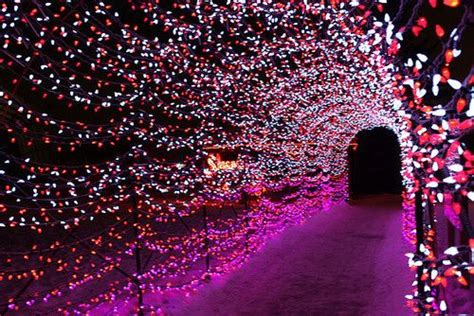 Tasteful Outdoor Christmas Decorations - hailey sandfort google