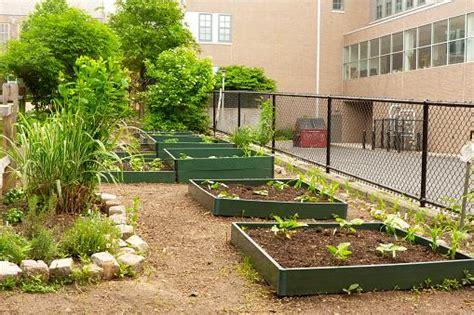 plan  school garden lovetoknow