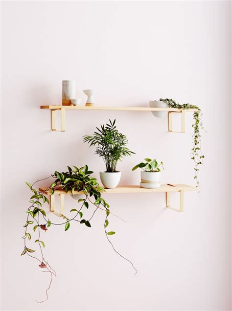 plant wall hangers indoor look muse homebody botanical wares collection we are scout