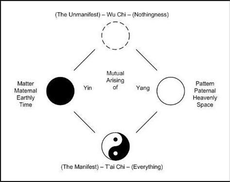 what does the yin yang symbolize yin yang quotes quotes