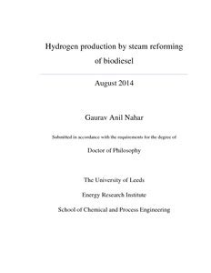 Phd Thesis On Biodiesel Pdf by Hydrogen Production By Steam Reforming Of Biodiesel