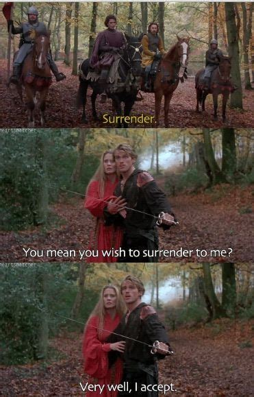 themes in the princess bride film 28 best princess bride images on pinterest film quotes