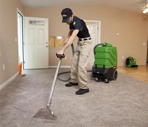 do it yourself upholstery cleaner why you should use professional carpet cleaners over